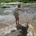 Crocodile Whisperer