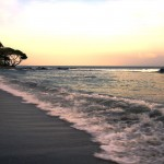 Cabuya Shores